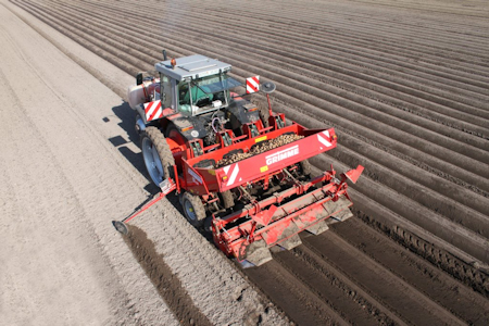Plantador de batatas Grimme GL410
